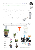comment-innoculer-champignons-solar-dripper