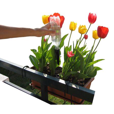 Des fleurs au balcon toute l'année